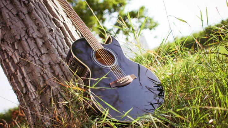 bosines gitaros