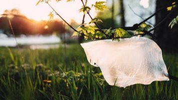 plastikiniai maiseliai